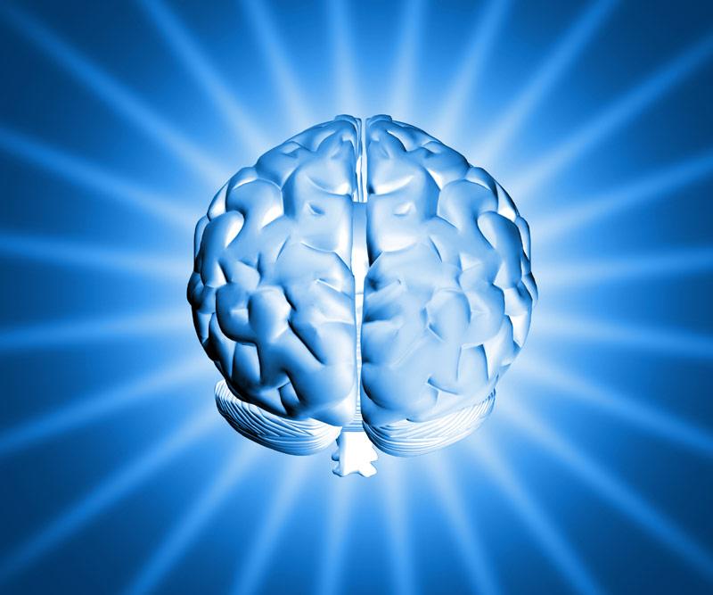 brain00
