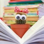 Bibliotecara.ro – platformă online de închiriere de cărți cu livrare la domiciliu